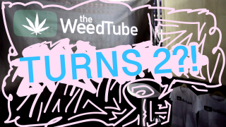 HAPPY BIRTHDAY THEWEEDTUBE!!!!! (2nd Year)
