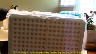 $65.00 Grow Light that Grows Monster Buds.