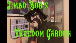 Jimbo Bob's Freedom Garden Grow #2: Days 77-79
