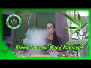 Blood Orange Weed Review From @Moxie