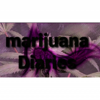 marijuana Diaries. From Mr Fox (E 01)
