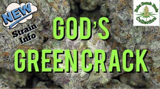 God's Green Crack, Bobs Bomb Buds Collection