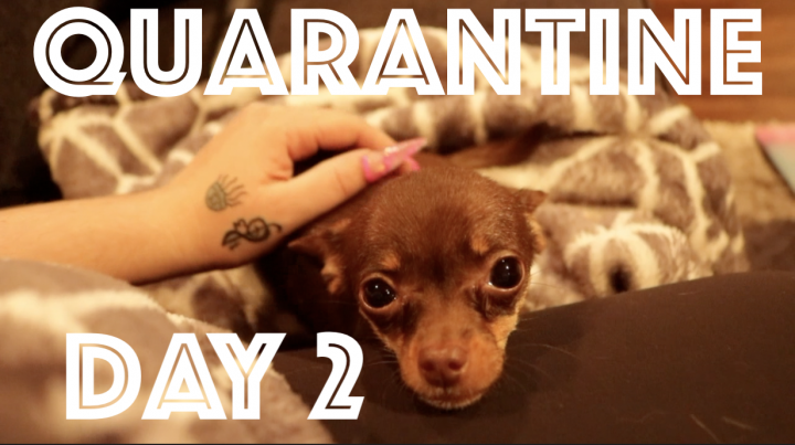 QUARANTINE VLOG: DAY 2