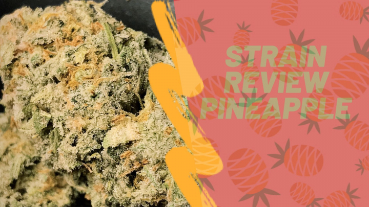 STRAIN REVIEW | PINEAPPLE