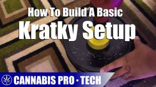 How to Build A Passive Hydroponic Kratky Setup