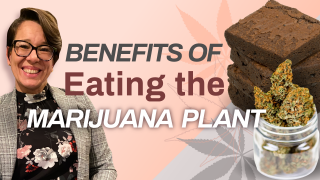Why Use Raw Marijuana? (Benefits of Eating the Marijuana Plant)