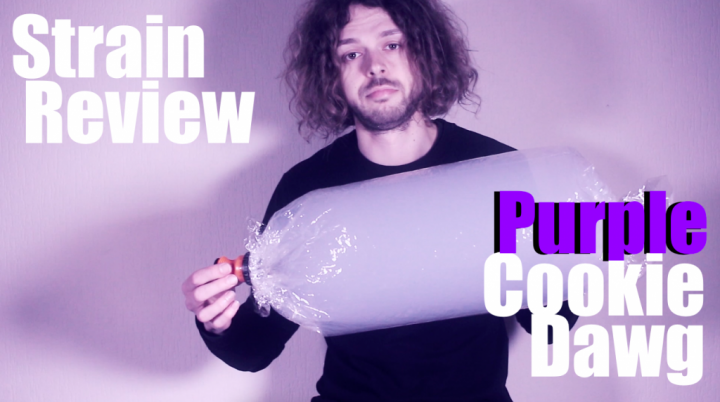 Strain Review: PURPLE COOKIE DAWG!!!