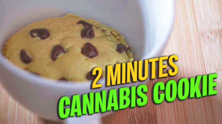 2 minutes Cannabis Chocolate Chip Cookie | Making edibles in Microwave