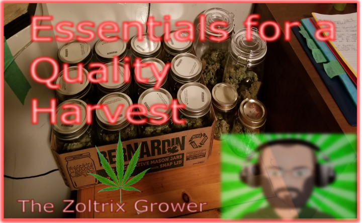 The Essential Plant Care Items | Grow Easier! | Must Have's