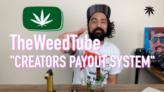 CHUCKIE FUEGO DABS AND TALKS ABOUT THEWEEDTUBE'S