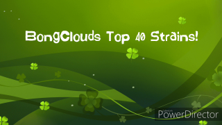 BongClouds Top 40 Favorite Strains!