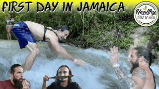 They Raced Up That Waterfall!? (Jamaica)