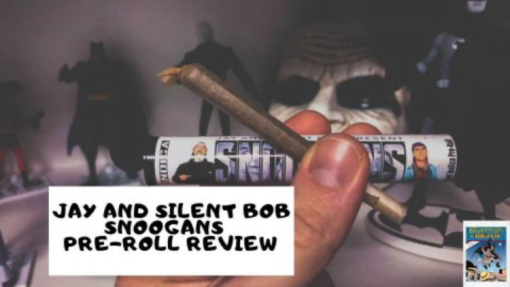 Jay and Silent Bob SNOOGANS | Pre-roll Review