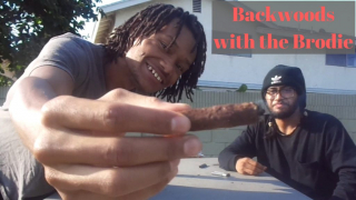 Not a Hotbox (ep35): Backwood with the Brodie