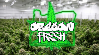 Oregon Fresh - SMOKE & REVIEW HOUR