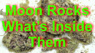 Moon Rocks, What Are They & What's Inside Them.