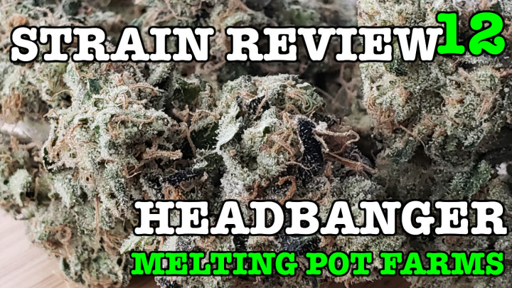 HEADBANGER STRAIN REVIEW 12 [ GROWERS ONLY CO ]