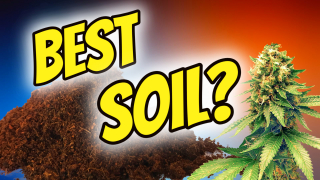 CHOOSING THE BEST SOIL FOR GROWING CANNABIS!