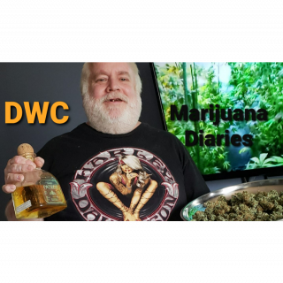 DWC ◇ Marijuana Diaries Episode 25 ◇ TWTGC