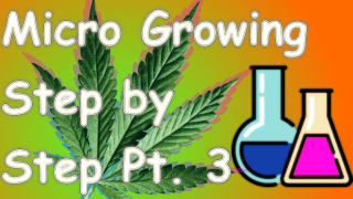 Micro Growing Step by Step Part 3 - Nutrients.