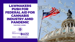 LAWMAKERS PUSH FOR FEDERAL AID FOR CANNABIS INDUSTRY AMID PANDEMIC | TRICHOMES Morning Buzz