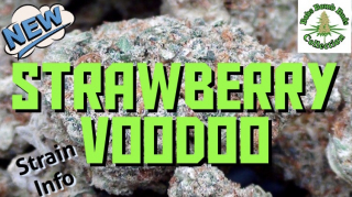 Strawberry Voodoo, Bobs Bomb Buds Collection.