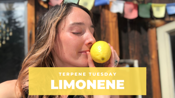 Terpenes! Limonene in Less Than 2 Minutes