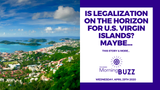 ADULT-USE CANNABIS MAY BE ON THE HORIZON IN THE U.S. VIRGIN ISLANDS | TRICHOMES Morning Buzz