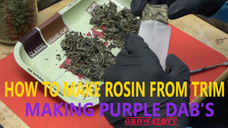 Making Purple Dab's!!! How to make rosin from trim!!!