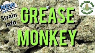 Grease Monkey, Strain review