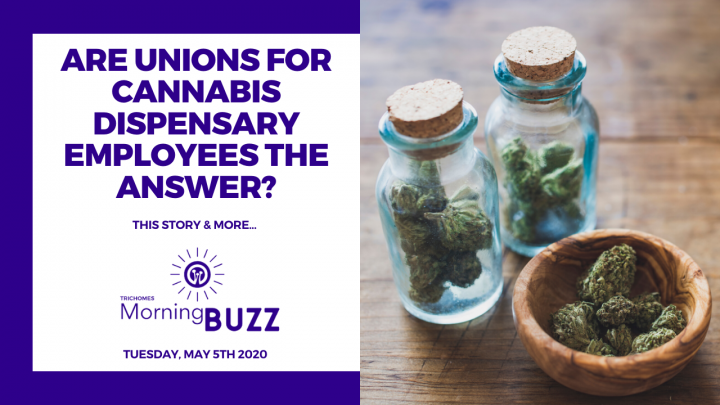 CANNABIS DISPENSARY WORKERS MAY START TO UNIONIZE AMID PANDEMIC | TRICHOMES Morning Buzz