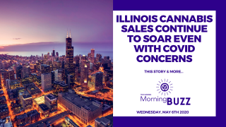 ILLINOIS CANNABIS SALES CONTINUE TO SOAR EVEN WITH COVID CONCERNS | TRICHOMES Morning Buzz