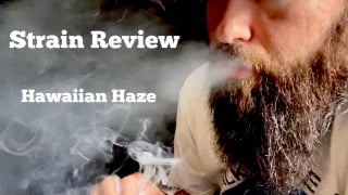Strain Review - Hawaiian Haze