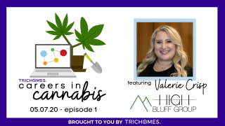 TRICHOMES CAREERS IN CANNABIS F. VALERIE CRISP FROM HIGH BLUFF GROUP