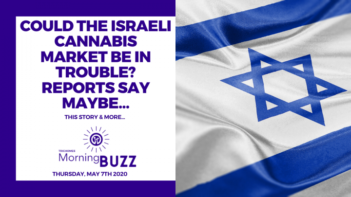 ISRAELI CANNABIS COMPANIES MAY BE IN TROUBLE   TRICHOMES Morning Buzz