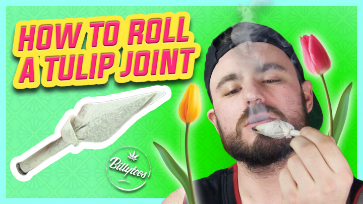 How To Roll A Tulip Joint In 3 Minutes