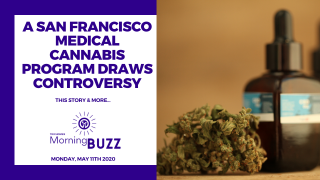 SAN FRANCISCO MEDICAL CANNABIS PROGRAM DRAWS CONTROVERSY | TRICHOMES Morning Buzz