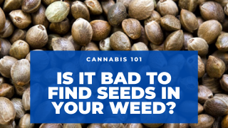 Is it Bad To Find Seeds in My Cannabis?