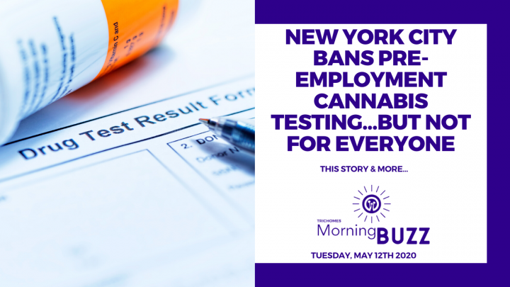NEW YORK BANS PRE EMPLOYMENT CANNABIS TESTING...BUT NOT FOR EVERYONE | TRICHOMES Morning Buzz