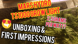 Mars Hydro TS 1000 Grow Light - Unboxing & First Impressions