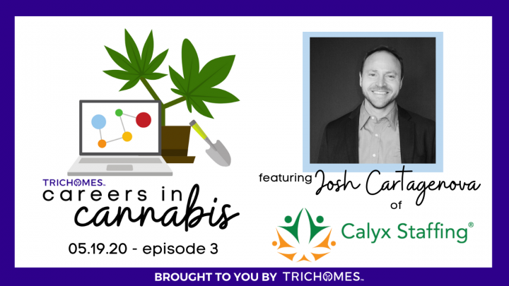 CAREERS IN CANNABIS F. JOSH CARTAGENOVA FROM CALYX - FINDING THE RIGHT SPOT FOR YOU IN THE INDUSTRY
