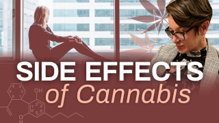What Are the Potential Side Effects of Cannabis Use?