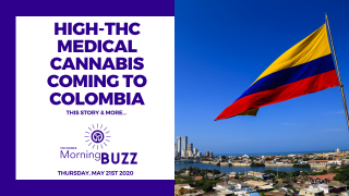 HIGH-THC MEDICAL CANNABIS IS COMING TO COLOMBIA | TRICHOMES Morning Buzz