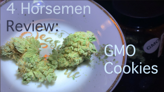 NJ Medical Dispensary Strain Review: GMO Cookies (Garden State Dispensary, Woodbridge, NJ)
