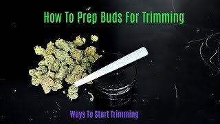 Trimming 101: How To Prep Marijuana Buds For Final Trimming
