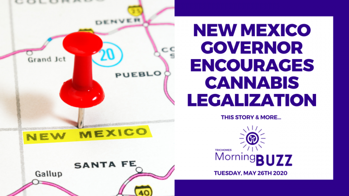 NEW MEXICO GOVERNOR ENCOURAGES CANNABIS LEGALIZATION | TRICHOMES Morning Buzz