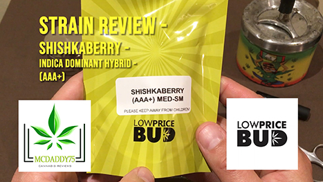 Shishkaberry - Indica Dominant Hybrid - AAA+ - From Low Price Bud - Strain Review