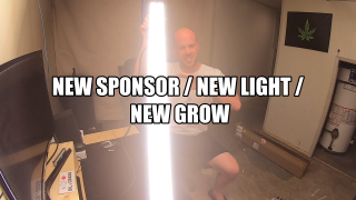 New Sponsor / New Light / New Grow / Mars Hydro SP 250