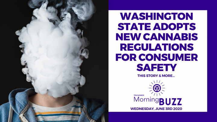 WASHINGTON STATE ADOPTS NEW CANNABIS REGULATIONS FOR CONSUMER SAFETY   TRICHOMES Morning Buzz