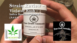 Violator Kush - Indica Dominant Hybrid - (AAAA) - From True Craft Cannabis - Strain Review